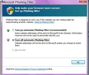 Internet Explorer phishing off