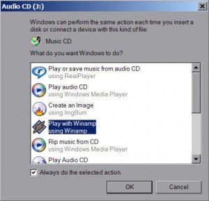 Ripping an audio CD on a PC